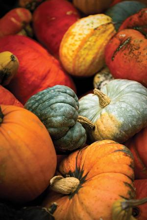 Pumpkin Clove & Cinnamon